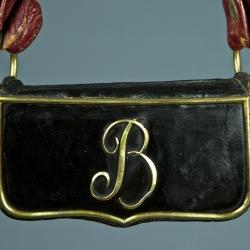 GIBERNE D'OFFICIER DE CHEVAU-LEGER BERNOIS MODELE 1804 -1806